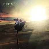 The Theft by The Drones