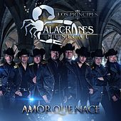 Amor Que Nace by Alacranes Musical