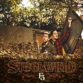 F5 by Steelwind