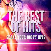 Shake Your Booty Hits by Top 40 Hip-Hop Hits