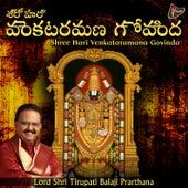 Shree Hari Venkataramana Govinda (Lord Shri Tirupati Balaji Prarthana) by S.P. Balasubrahmanyam