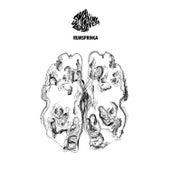Rumspringa by Shaking Godspeed