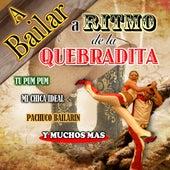 A Bailar A Ritmo De Quebradita by Concepto
