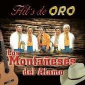Hit's De Oro by Los Montaneses Del Alamo