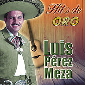 Hit's De Oro by Luis Perez Meza