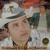 Homenaje A Chalino Sanchez, Vol. 2 by Mario