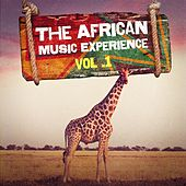 The African Music Experience, Vol. 1 by Kara