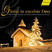Bach: Gloria In Excelsis Deo by The Bach Ensemble
