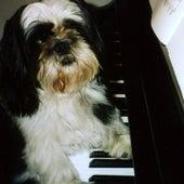 Liszt Campanella - Ringtone by Ben Choupak
