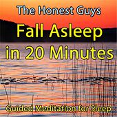 Fall Asleep in 20 Minutes (Guided Meditation For Sleep) by The Honest Guys
