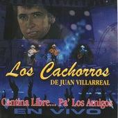 Cantina Libre Pa' Los Amigos En Vivo by Los Cachorros de Juan Villarreal