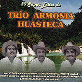 20 Super Exitos by Trio Armonia Huasteca