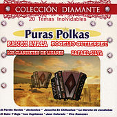 Puras Polkas - Colección Diamante by Various Artists