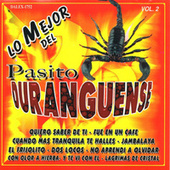 Pasito Duranguense, Vol. 2 by Various Artists