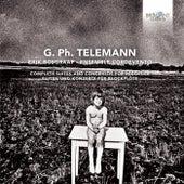 Telemann: Complete Suites and Concertos for Recorder by Erik Bosgraaf