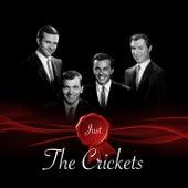Just - The Crickets von Bobby Vee