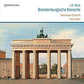 Bach: Brandenburg Concertos, BWV 1046-1051 by Various Artists