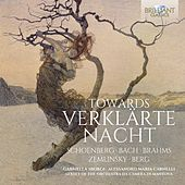 Schoenberg: Towards verklärte Nacht von Various Artists