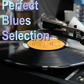 Perfect Blues Selection von Various Artists