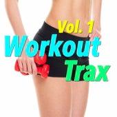 Workout Trax, Vol. 1 von Various Artists
