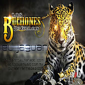 El Jaguar (Single) by Los Buchones de Culiacan
