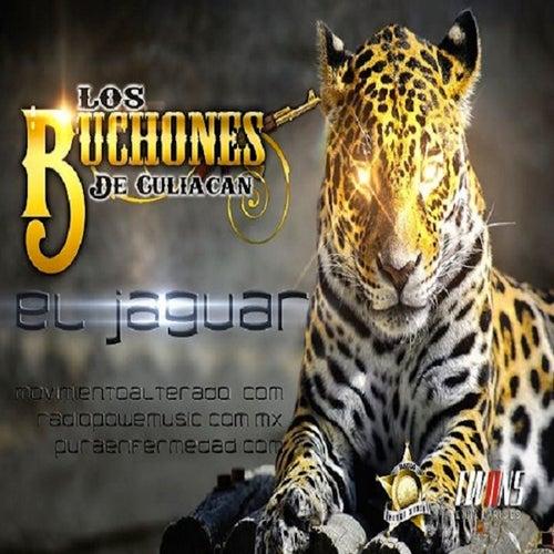 El Jaguar (Single) by Los Buchones de Culiacan