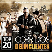El Movimiento Alterado - Top 20 Corridos Delincuentes by Various Artists
