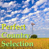 Perfect Country Selection von Various Artists