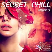 Secret Chill, Vol. 5 by Various Artists