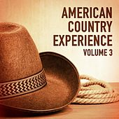 The American Country Experience, Vol. 3 von Various Artists