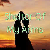 Shelter Of My Arms von Various Artists