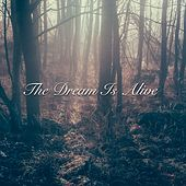 The Dream Is Alive by Various Artists