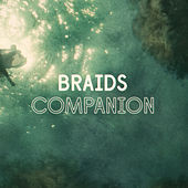Companion (Single) by Braids