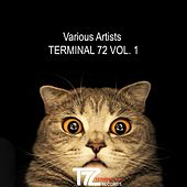 Terminal 72, Vol. 1 by Various Artists