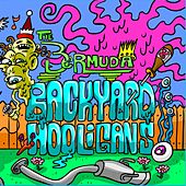 Backyard Hooligans by Bermuda