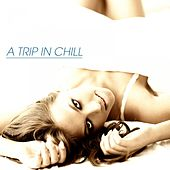 Fashion Groove Miami - Chill and Deep by Various Artists