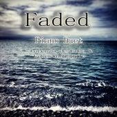 Faded (Piano Duet) by Luke Woodapple