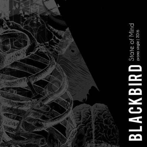 State of Mind by Blackbird