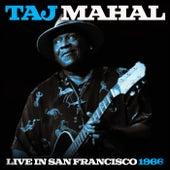 Taj Mahal Live In San Francisco 1966 (Live) von Taj Mahal