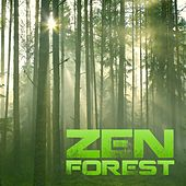 Zen Forest by Nature Sound Collection