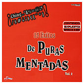 15 Exitos De Puras Mentadas, Vol. 2 by Various Artists