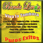 Viva la Tambora - Puros Exitos, Vol. 1 by Various Artists