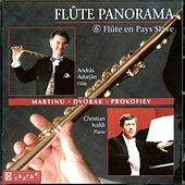 Flûte Panorama 6 by flute András Adorján