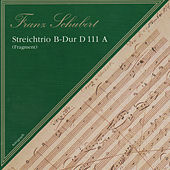 Franz Schubert: Streichtrio B Dur D111 A by Gabriela Sima