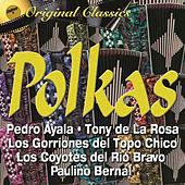 Polkas by Various Artists