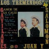 Amor de la Calle by Los Tremendos Gavilanes