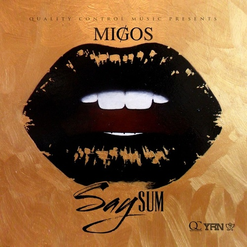 Say Sum by Migos