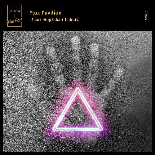 I Can't Stop (Ekali Tribute) by Flux Pavilion