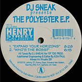 The Polyester - Single by DJ Sneak