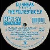 The Polyester - Single by DJ Sneak